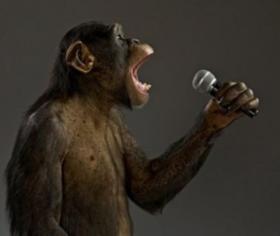 Rhythm & Booze bar shawnee kansas monkey singing karaoke